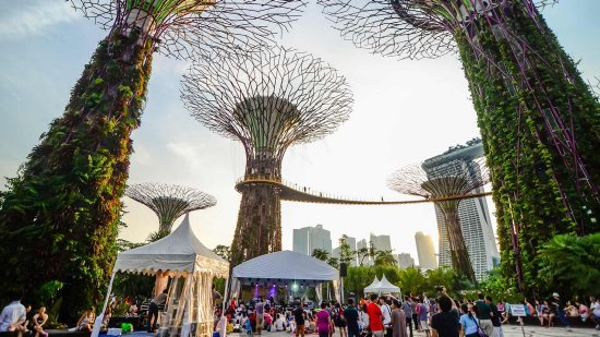 Avatar-like Supertrees Singapore