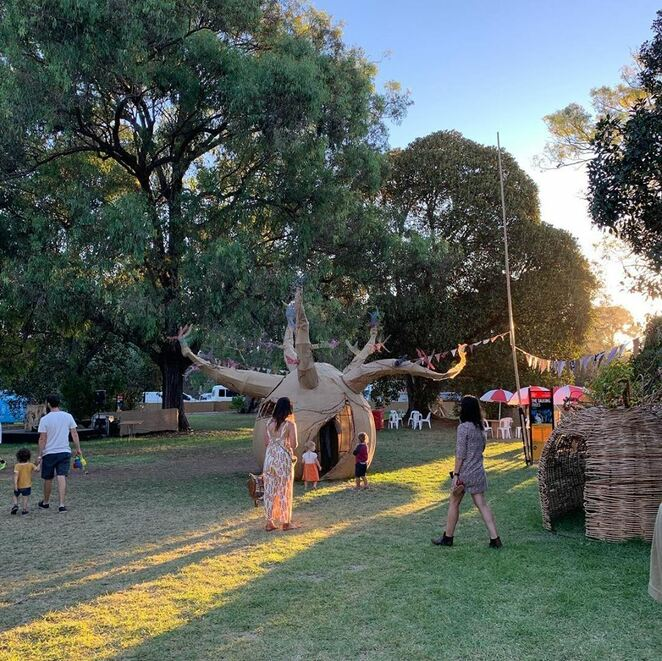 climbing tree, womadelaide, 2019