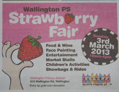 Wallington Primary School Strawberry Fair 2013