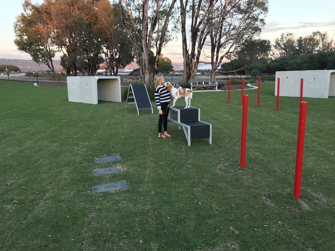enclosed dog parks, dog agility playground, where to take dogs in perth, annies landing dog park, ellenbrook dog parks, new dog parks
