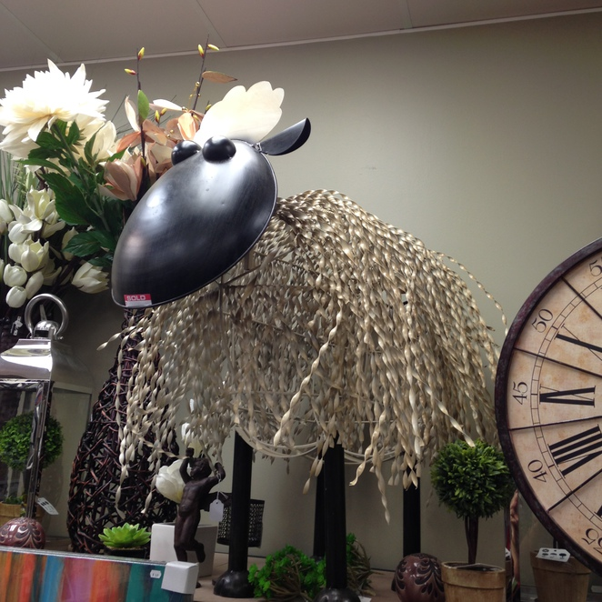 Homewares, The Redlands, Alexandra Hills, Shopping, Gifts, Unique, Unusual, Things to See, Creative