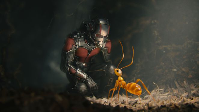 Marvel's Ant-Man - Scott Lang communicating with ants