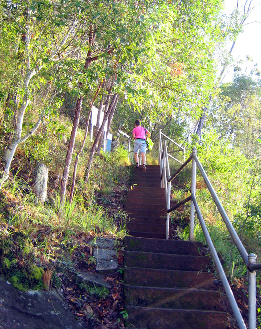 Stairs at the start of the hiking trail