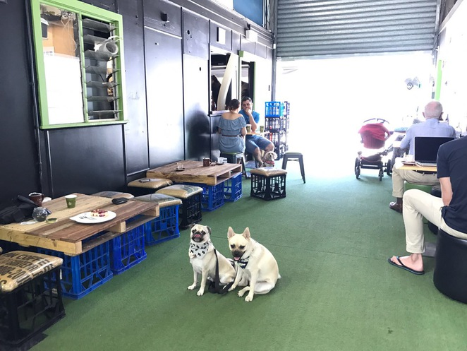 mt cup espresso, cafe, espresso bar, coffee, campos coffee, teneriffe, inner suburbs, eastern suburbs, northern suburbs, north side, brisbane, dog friendly, puppiccino, cake, dessert, breakfast, brunch, lunch, cross fit, green beacon brewing company
