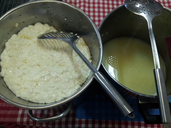 permaculture realfoods curds whey cheese feta