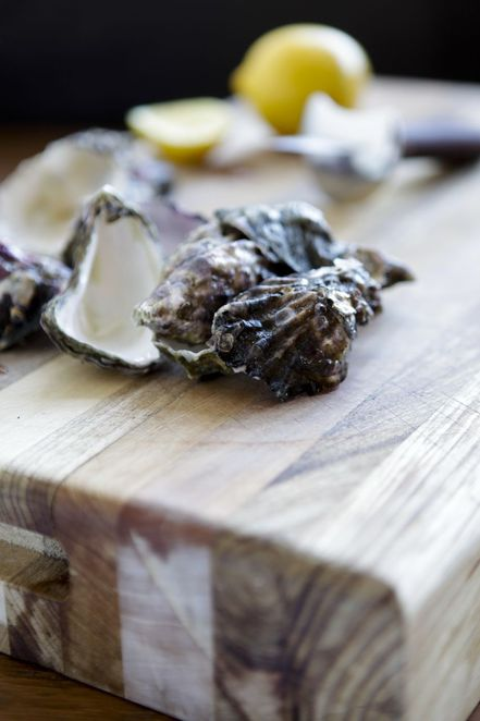 shucking, oyster skills, oyster bar, the morrison festival