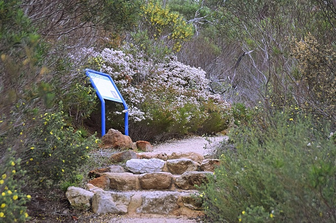 Stamford Hill Loop Hike, Stamford Hill Hike, Lincoln National Park, Port Lincoln, Investigator Trail, Surfleet Cove, National Parks SA