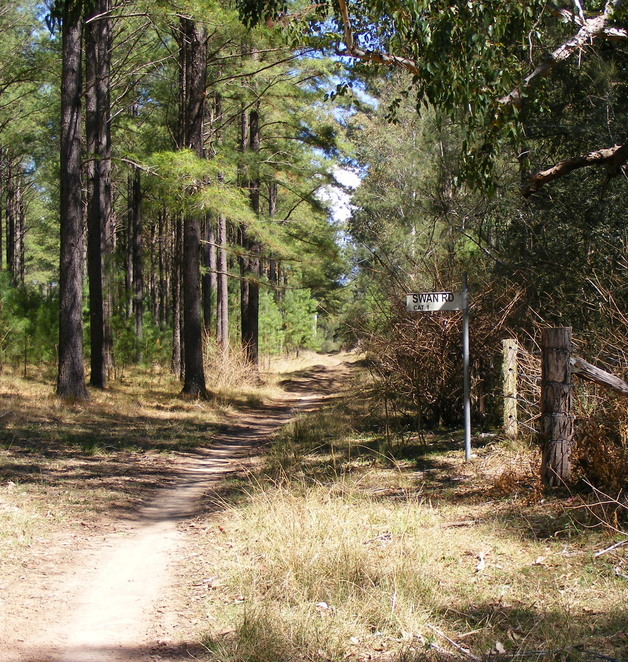 There are a number of tracks around the area, some of which are sign posted as roads, but still make pleasant walking