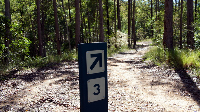 One hiking option is to follow the Number 3 mountain bike trail