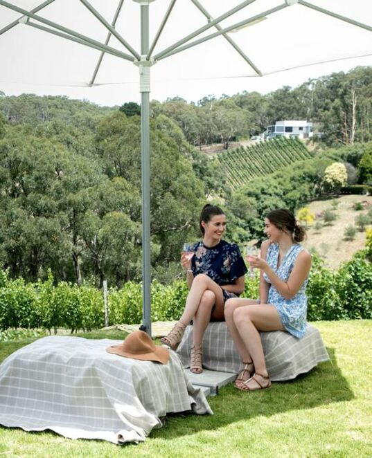 Adelaide hills crush festival, Adelaide hills, wine, sun, breezes, grape vines, accommodation, live music, pike and joyce, landhaus, mt bera, cobb's hill, shaw and smith, Anderson hill, Petaluma wines, howard vineyard, golding wines, sidewood estate