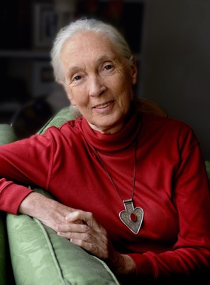 An,Evening,with,Jane,Goodall