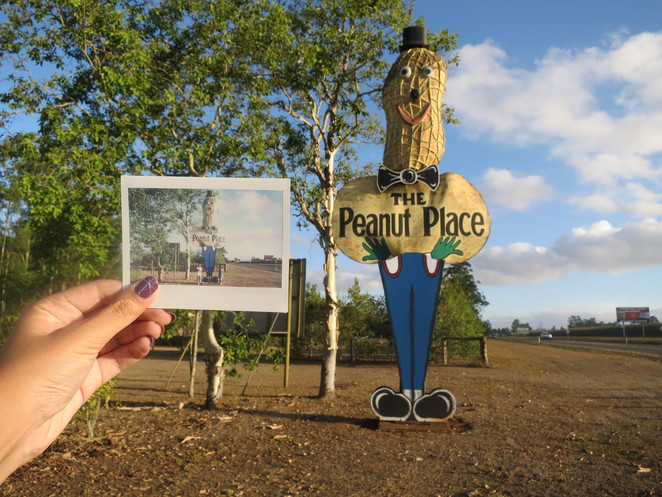 big things, australia, road trip, attraction, tourist, queensland, brisbane, cairns, the peanut place, big peanut, peanut, tolga, farm