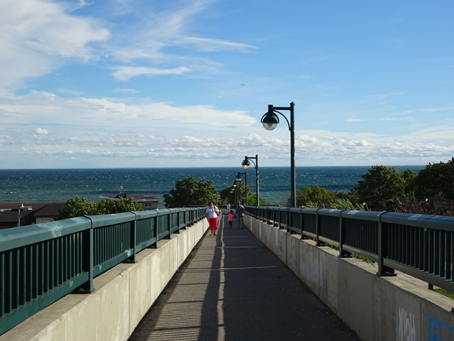 Bridge to Lake Shore