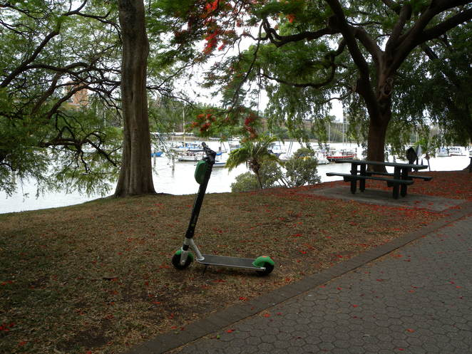 Lime Scooter in the City Botanic Gardens, Brisbane