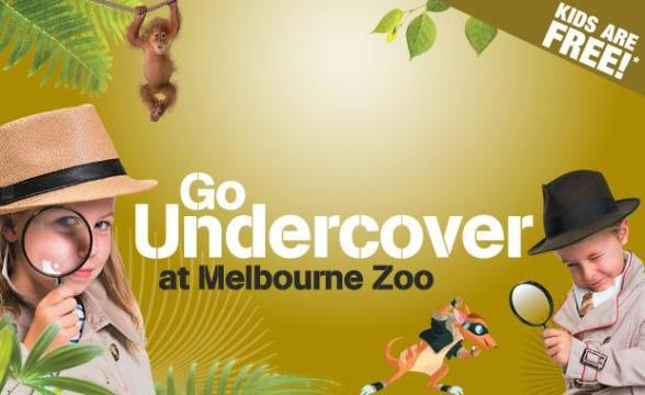 go undercover at melbourne zoo