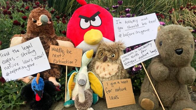 join the plushie protest, fight agains extinction, nature laws, environment law under review, aussie backyard bird count, community event, environmental, fun tigns to do, birdlife australia, online event, connect to the backyard, isolation activity, local park, main street, on the beach, win prizes