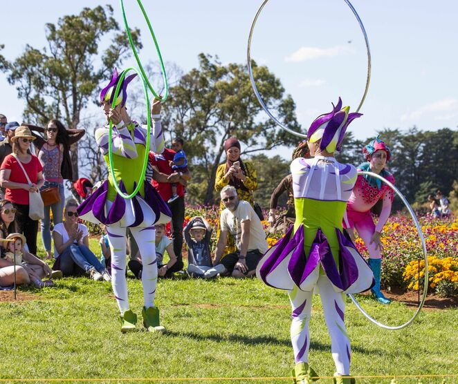 Kabloom Flowers and Circus Festival