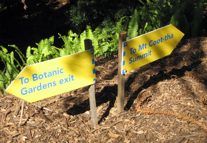 Follow the Mt Coot-tha signs through the Brisbane Botanic Gardens to the start of the Citriodora Trail