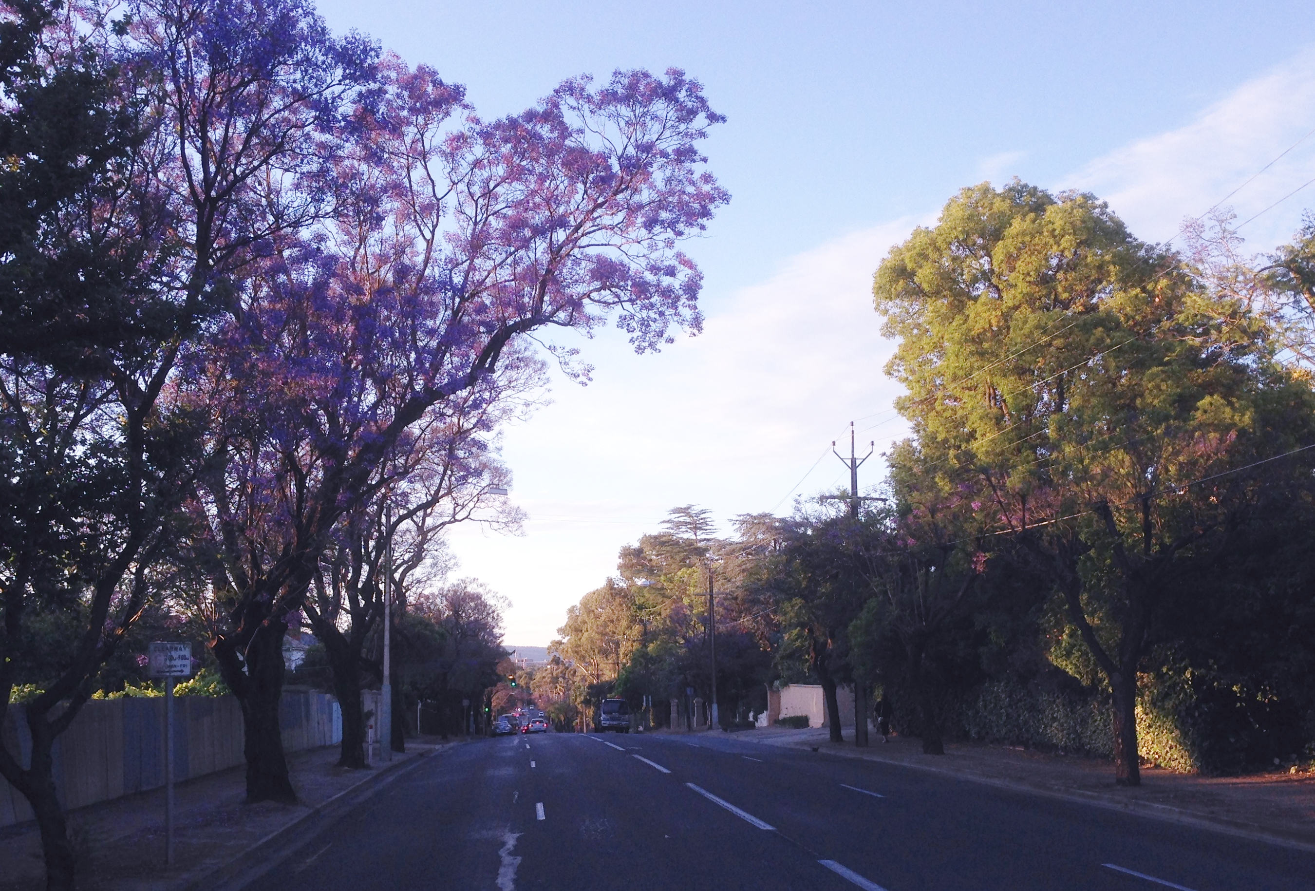 Where is the prettiest street in adelaide adelaide for 129 north terrace adelaide