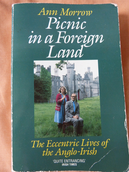 Picnic in a Foreign Land: The Eccentric Lives of the Anglo-Irish,Ann Morrow,book review