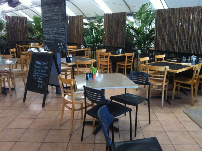 Sanctuary Cafe, Warriewood, Flower Power, Northern Beaches