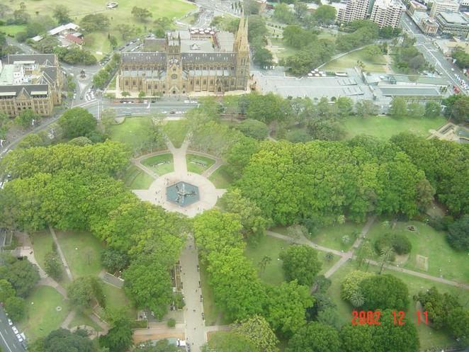 sydney tower view; hyde park; st mary's cathedral