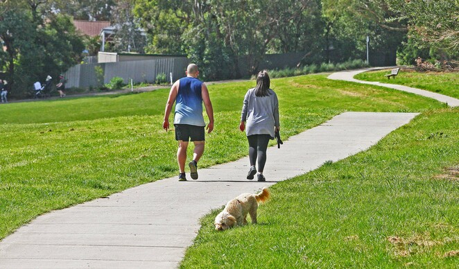 Walkers with dog.