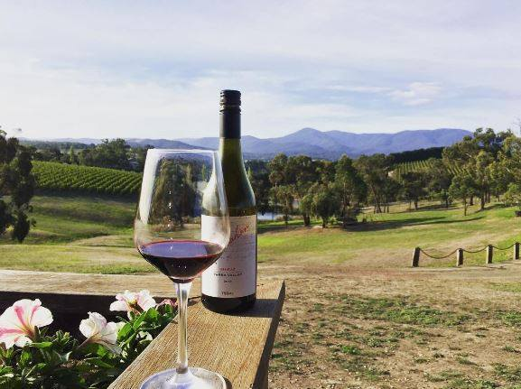 Rochford Winery Food And Wine Festival