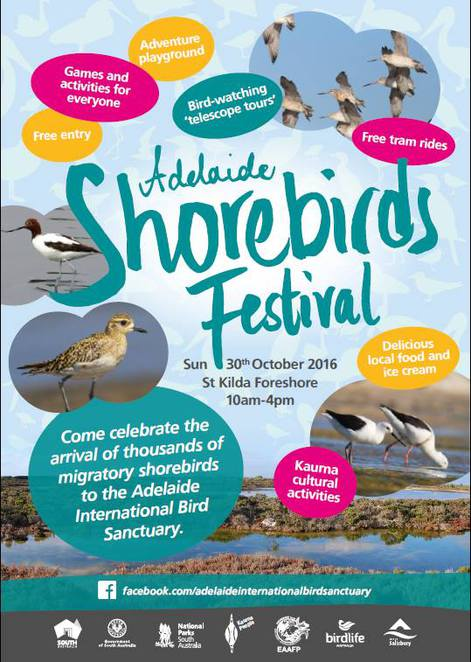 adelaide shorebirds festival, adelaide international bird sanctuary, st kilda, shorebirds, bird sanctuary, fun things to do, free things to do, activities for kids, kaurna, event poster