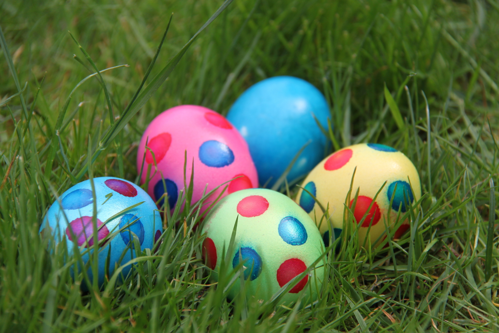 Easter fun day at rippon lea 2016 melbourne by jen easter fun day ripponlea house and gardens national trust make a negle Images