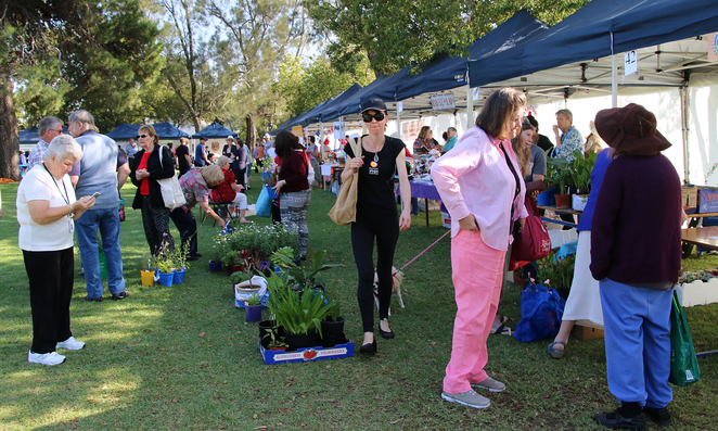 Gawler, Village, Fair, 2018, Rotary, plants, people