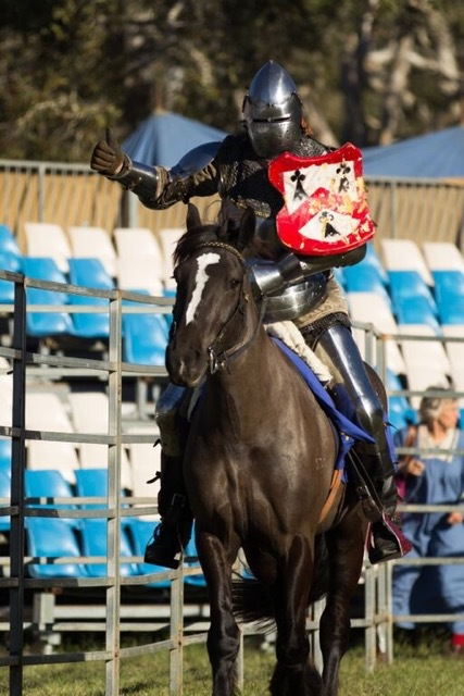 Medieval Festival - Knight on Horse