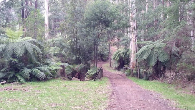 The Olinda Creek Trail and other great walking tracks are just a few hundred meters away.
