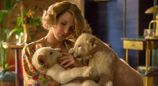 the zookeepers wife, zookeeper, holocaust, movie, luna, perth