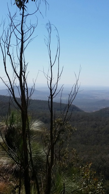 View from Spicers Peak