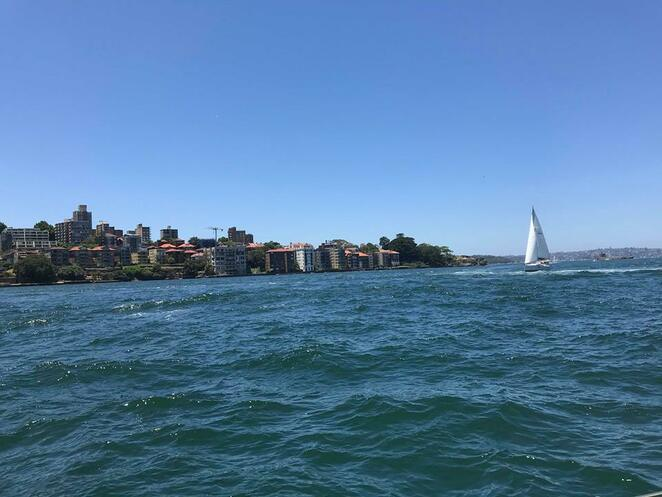asail, yacht charters, learn to sail, sydney harbour, sailing, boat