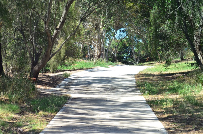 Baymore Reserve, North East Rd, Modbury, Oh Bahn, Walking trail