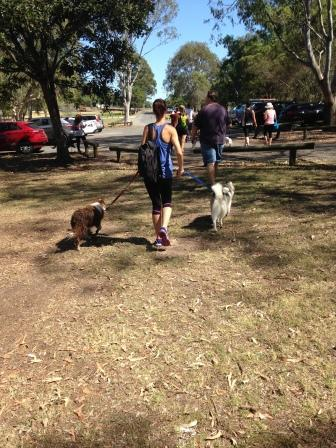 Brisbane dog-friendly walks, easy dog walks, Tingalpa dog walks, Minnippi Parklands, Minnippi Parklands dog walk, Brisbane Woof Pack