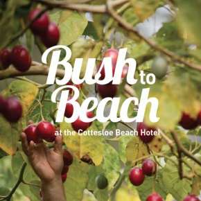 bush to beach, cottesloe hotel, southern forest region, pop up farmers market, pop up stall