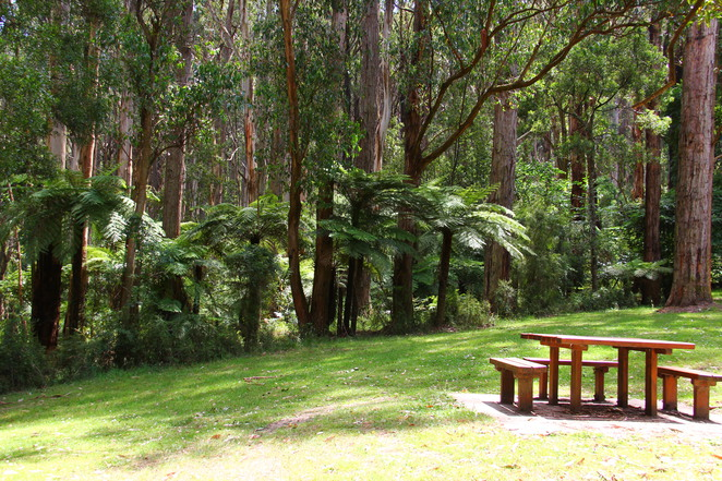 Doongalla picnic ground.