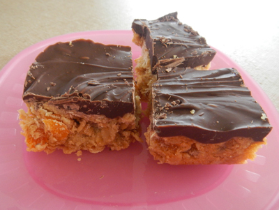 Choc Apricot Rolled Oat Slice Recipe