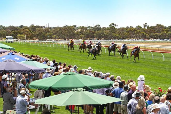 A day at the country races, Fashions on the field, Balaklava Cup, Strathalbyn Cup, Innamincka Cup, Gawler Cup, Horse Racing, Quorn Cup, Hawker Cup