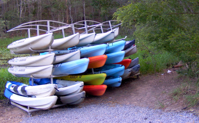 You can hire kayaks at Walkabout Creek and kayak on Enoggera Reservoir