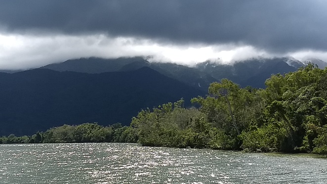 Mulgrave River, Frankland Islands reef and river cruise, Mount Bartle frere national park, things to do near Cairns