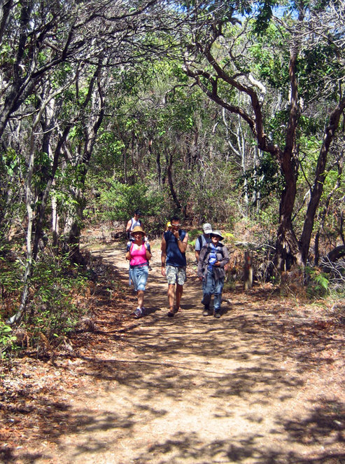 Tanglewood Track, Noosa Heads