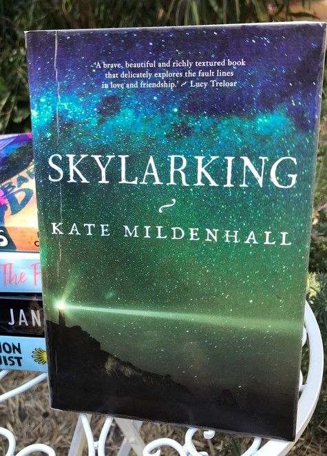 skylarking, kate mildenhall, reads, reading, book, bookworm, free, library, literary, review, entertainment