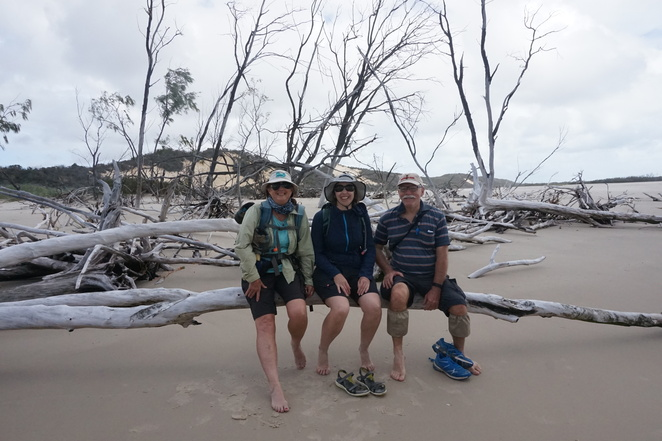 Walkers and driftwood