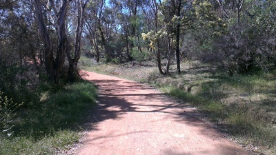 Walking Mount Ainslie Trail