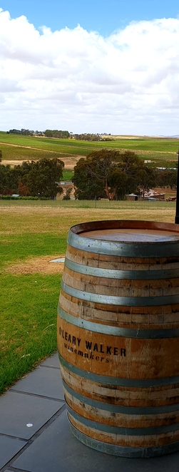 Winery, Clare Valley, winebar, tasting, grazing, South Australia, family, views
