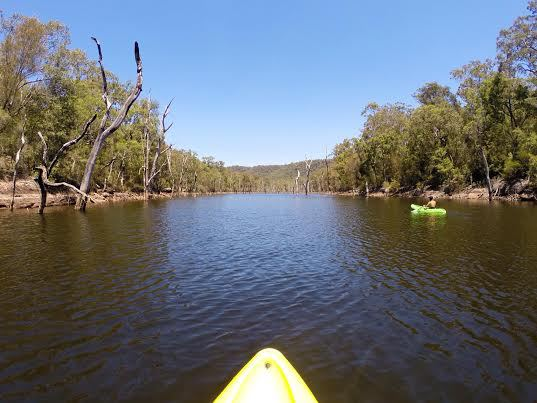canoe, paddle, river, kangaroo valley, national park, nsw, nature, outdoors, camping